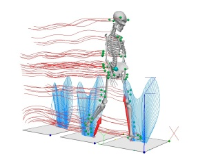 biomechanics_visualisation